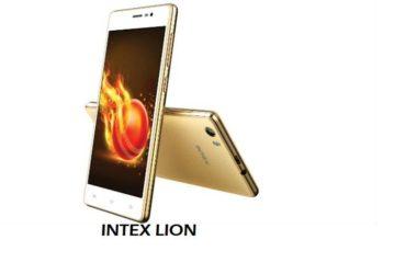 Intex lion